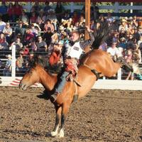 rodeo_caro_3
